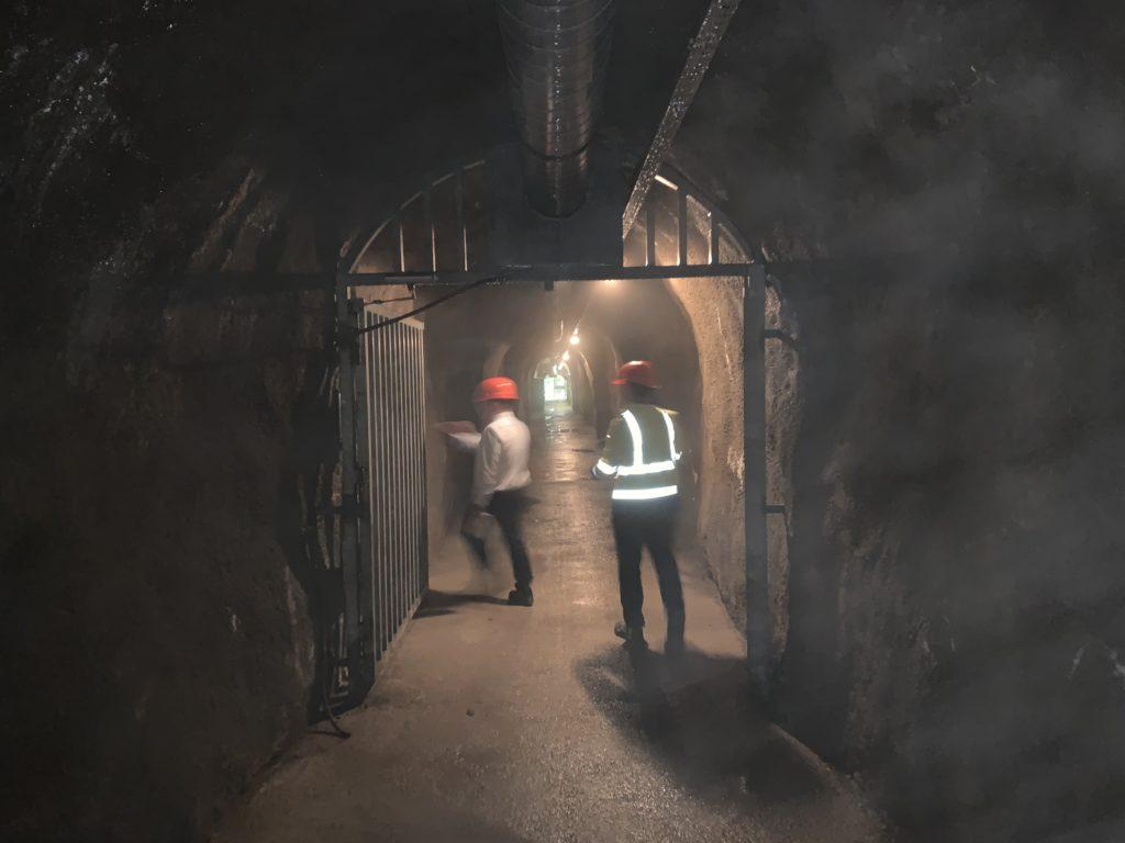 Gefährdungsbeurteilung, Bergwerkstollen bzw. Arbeitsstättenbegehung und Analysen